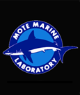 Mote Marine Sea Turtle Hospital