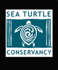 Conserve Sea Turtles