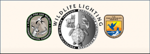 wildlife lighting fwc resources sea turtle lighting